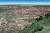 AZ-Petrified Forest National Park-Tawa Point-2005-05-22-0003