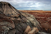AZ-Petrified Forest National Park-2006-11-12-0002