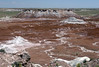 AZ-Petrified Forest National Park-Blue Mesa-2005-05-22-0009