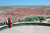AZ-Petrified Forest National Park-Tiponi Point-2005-05-22-1001