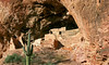 AZ-Tonto National Park-2005-10-23-0006