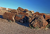AZ-Petrified Forest National Park-Crystal Forest-2006-11-11-0002