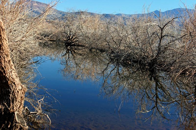 AZ-Roosevelt Lake-2005-10-23-0015