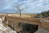 AZ-Petrified Forest National Park-Agate Bridge-2006-11-12-0009