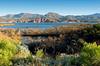 AZ-Roosevelt Lake-2005-10-23-0012