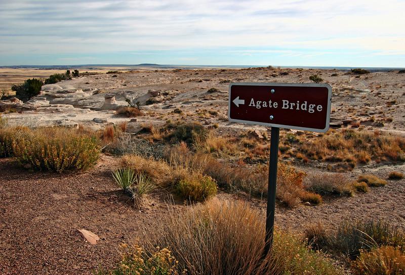 AZ-Petrified Forest National Park-Agate Bridge-2006-11-12-0000