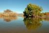 AZ-Roosevelt Lake-2005-10-23-0025