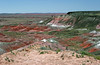 AZ-Petrified Forest National Park-Nizhoni Point-2005-05-22-0001