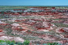AZ-Petrified Forest National Park-Tiponi Point-2005-05-22-0003