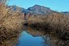 AZ-Roosevelt Lake-2005-10-23-0014
