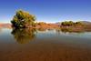 AZ-Roosevelt Lake-2005-10-23-0024