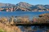AZ-Roosevelt Lake-2005-10-23-0010