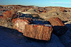 AZ-Petrified Forest National Park-Crystal Forest-2006-11-11-0004