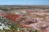 AZ-Petrified Forest National Park-Lacey Point-2005-05-22-0002