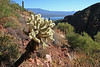 AZ-Tonto National Park-2005-10-23-0015