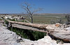 AZ-Petrified Forest National Park-Agate Bridge-2005-05-22-0002
