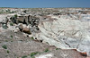 AZ-Petrified Forest National Park-Blue Mesa-2005-05-22-0006