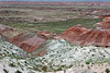 AZ-Petrified Forest National Park-Whipple Point-2005-05-22-0002