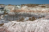 AZ-Petrified Forest National Park-Blue Mesa-2005-05-22-0011