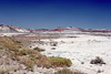 AZ-Petrified Forest National Park-Blue Mesa-2005-05-22-0005