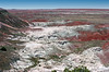 AZ-Petrified Forest National Park-Tawa Point-2005-05-22-0002