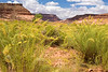 AZ-Monument Valley Area-2008-09-01-0008