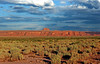 AZ-Round Rock Area-2005-09-07-0009
