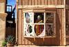 AZ-Tucson-Old Tucson Studios-2007-10-28-0033