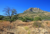 AZ-Sierra Vista Area-Coronado NMP-2007-10-27-0005