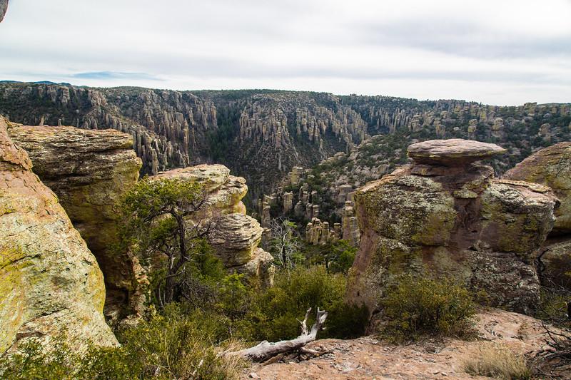 Chiricahua National Monument - Massai Point Trailhead