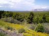 AZ-I17-Exit 293-McGuireville-2003-09-05-0003