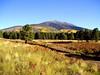 AZ-Flagstaff-San Francisco Peaks-2003-10-10-0013