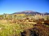 AZ-Flagstaff-San Francisco Peaks-2003-10-10-0007