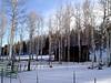 AZ-Bellemont-2004-02-13-0005
