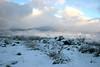AZ-Flagstaff-2006-03-12-0004