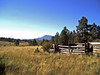 AZ-Flagstaff-San Francisco Peaks-2003-10-10-2001