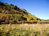AZ-Flagstaff-San Francisco Peaks-2003-10-10-0008