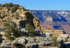 AZ-Grand Canyon National Park-2008-01-20-Bright Angel Trail-0003