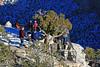 AZ-Grand Canyon National Park-2008-01-20-Bright Angel Trail-0002