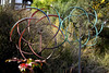 AZ-Sedona-Art-2005-11-05-0010