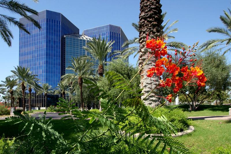 AZ-Phoenix-Downtown-2005-10-09-0005