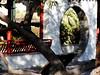 AZ-Phoenix-Chinese Cultural Center-2004-12-19-0017