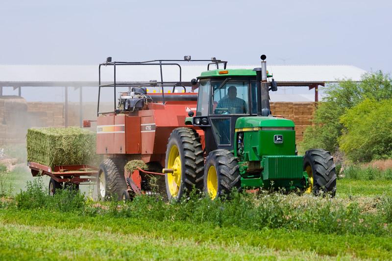 AZ-Phoenix, Farming-2009-05-03-0001<br /> <br /> Housing sprawl is encroaching on good usable farm land.