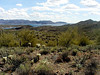 AZ-Lake Pleasant-2004-02-28-0004