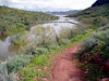 AZ-Lake Pleasant-Pipeline Trailhead South-2005-02-21-0003