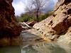 AZ-Castle Hot Springs-2004-02-28-0022