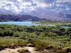 AZ-Lake Havasu-Wild Life Refuge-2003-09-10-0001