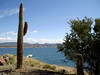 AZ-Lake Pleasant-2004-02-28-0002