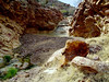 AZ-Castle Hot Springs-2004-02-28-0020
