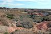 AZ-Yuma-Martinez Lake-Imperial Wildlife Refuge-Smoke Tree Point-2006-02-01-0005